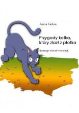 Przygody kotka, który zlazł z płotka e-book bajka